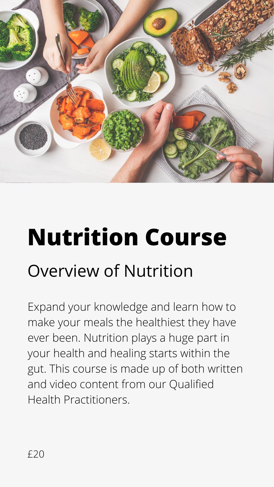 Nutrition Course icon